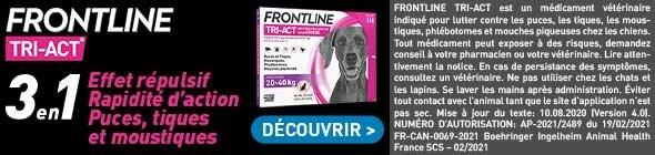 labo-frontline-210601-tri-act-chien-comb-r